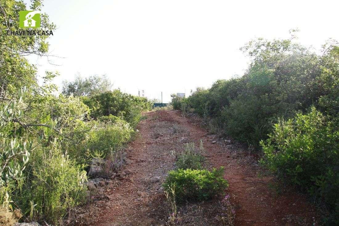 Terreno para comprar, Moncarapacho e Fuseta, Faro - Foto 28