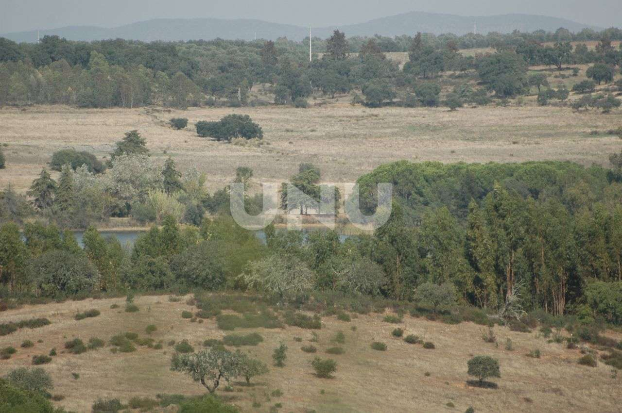 Quintas e herdades para comprar, Vila Nova de São Bento e Vale de Vargo, Serpa, Beja - Foto 1