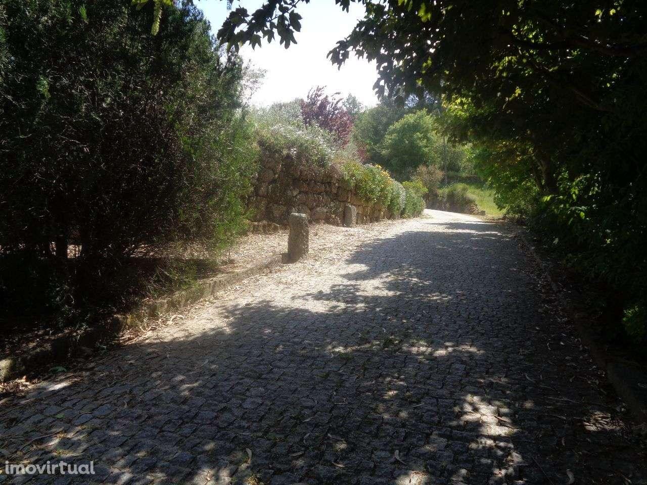 Quintas e herdades para comprar, Anreade e São Romão de Aregos, Viseu - Foto 50