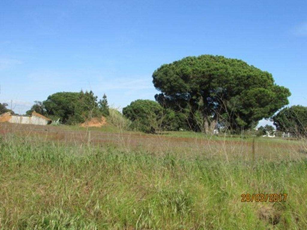Terreno para comprar, Pinhal Novo, Setúbal - Foto 5
