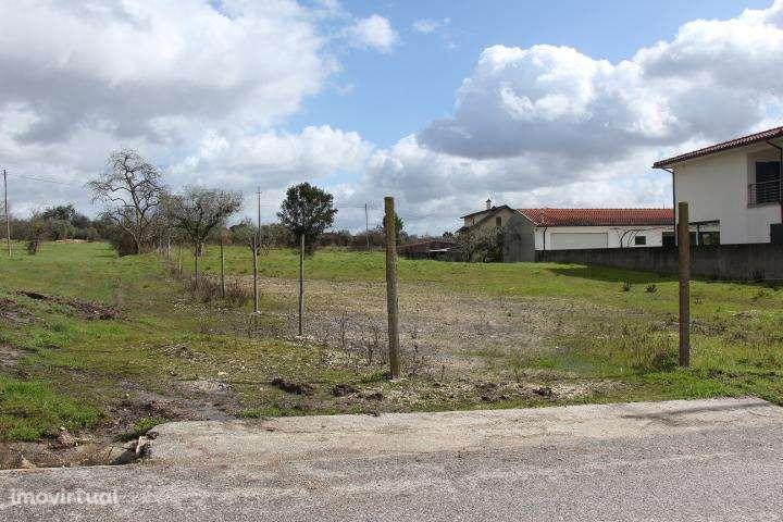 Terreno para comprar, Mortágua, Vale de Remígio, Cortegaça e Almaça, Viseu - Foto 4