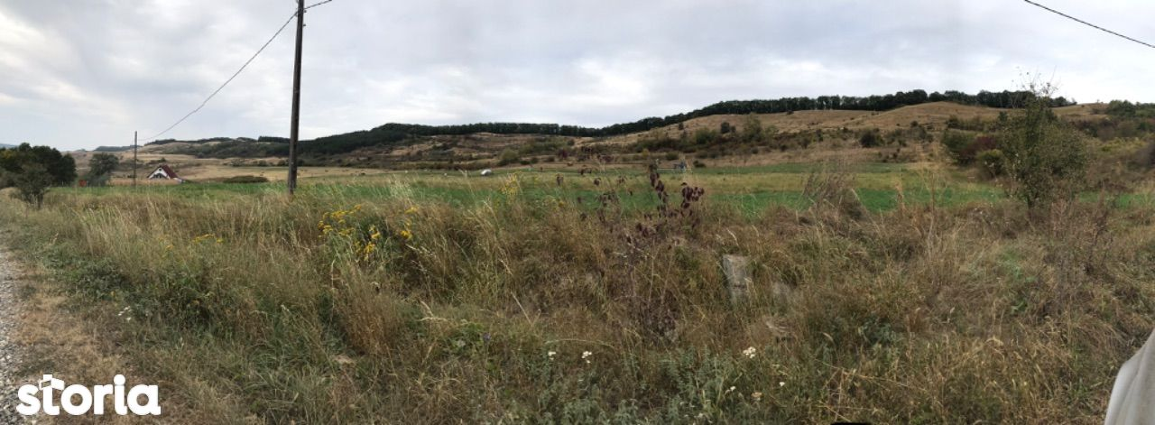 Teren extravilan, 40 ha, pasune și livada, la 20 Km de Tg-Mures