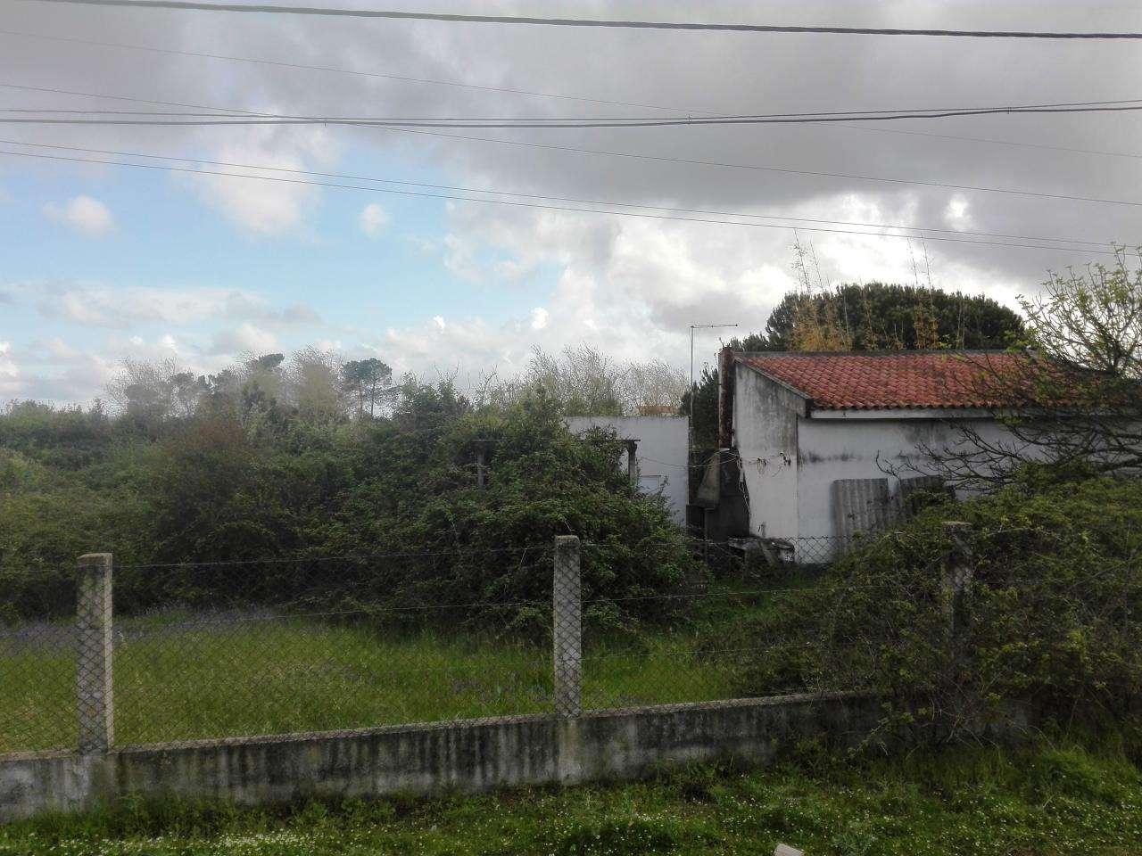 Quintas e herdades para comprar, Quinta do Anjo, Setúbal - Foto 7