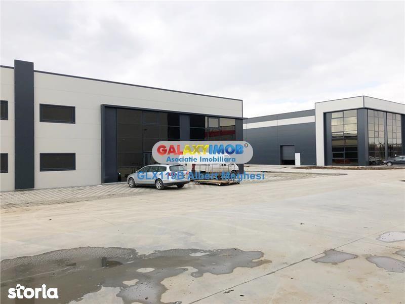 Vanzare Hala Industriala Centura Sud Magurele