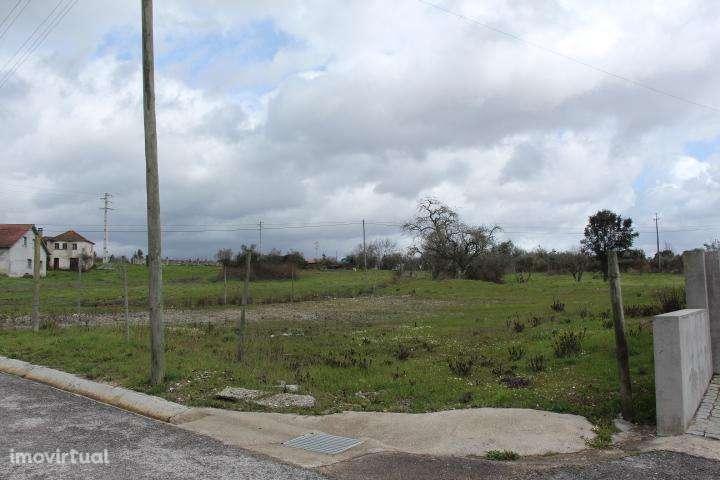 Terreno para comprar, Mortágua, Vale de Remígio, Cortegaça e Almaça, Viseu - Foto 9