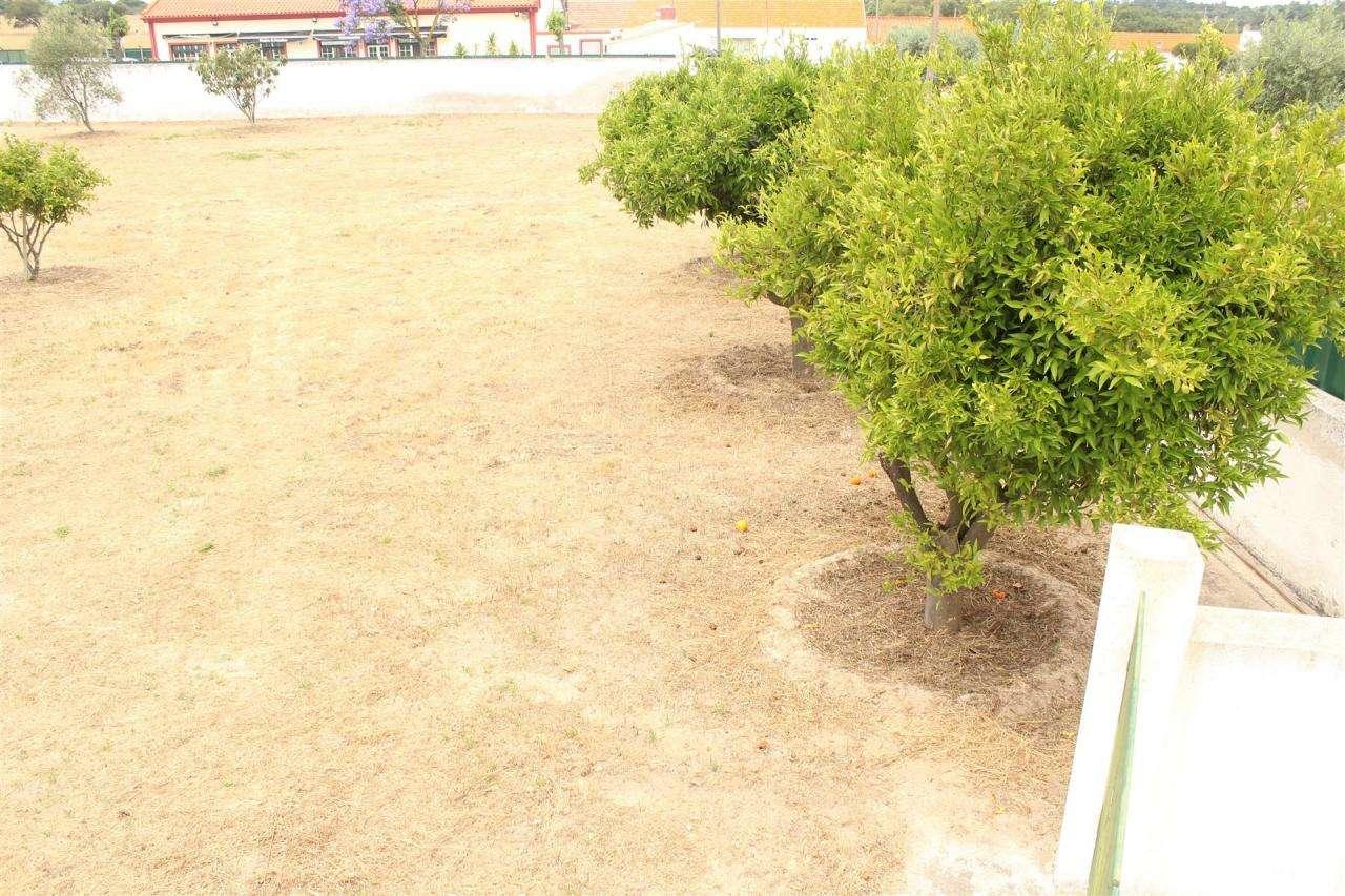 Terreno para comprar, Gâmbia-Pontes-Alto Guerra, Setúbal - Foto 5