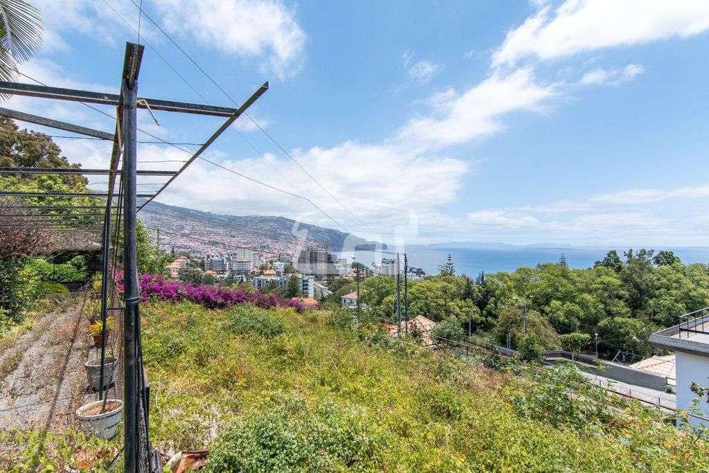 Quintas e herdades para comprar, São Martinho, Ilha da Madeira - Foto 10