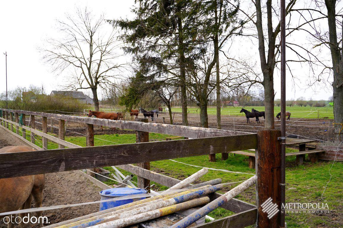 **Stajnia koni z domem i bazą noclegową