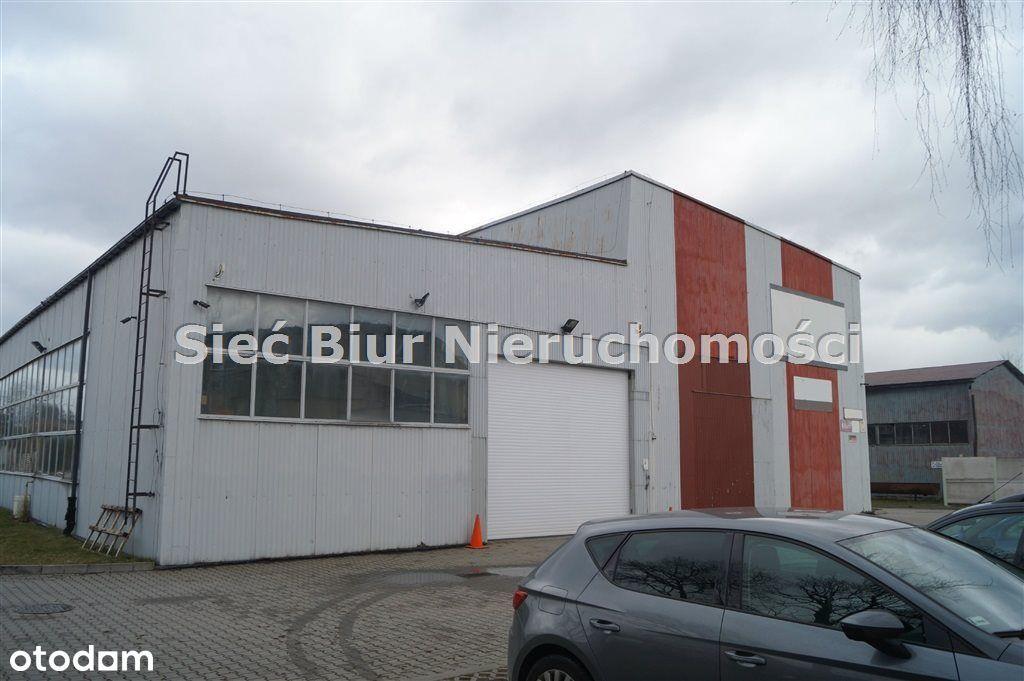 Hala/Magazyn, 1 695,36 m², Czechowice-Dziedzice