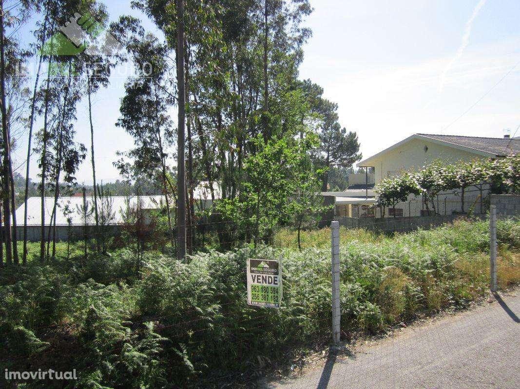 Terreno para comprar, Lobão, Gião, Louredo e Guisande, Aveiro - Foto 3