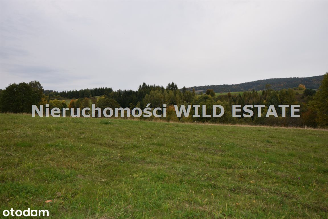 Działka, 34 742 m², Lesko