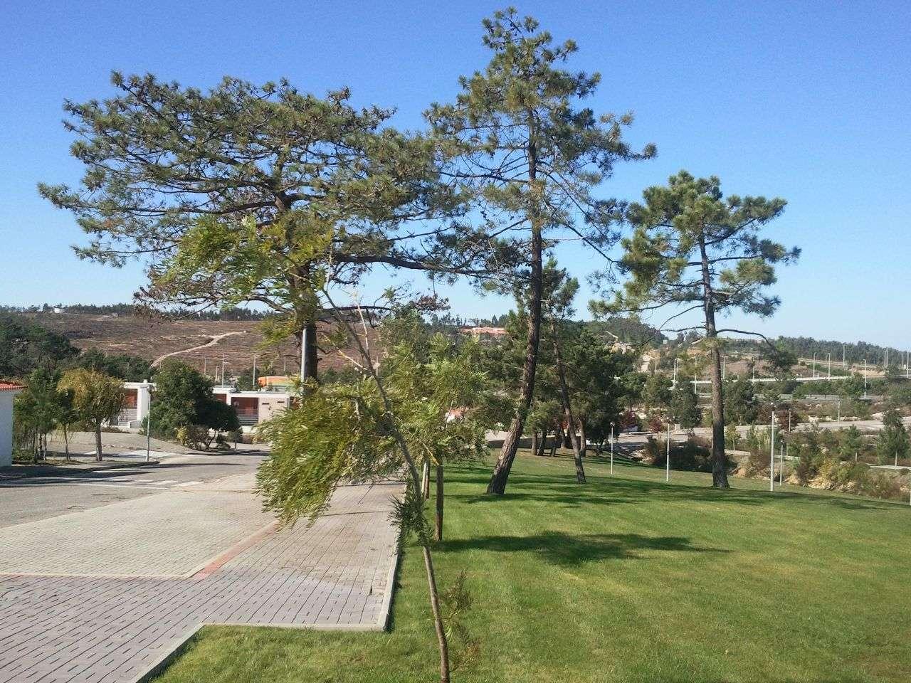 Terreno para comprar, Torres Vedras (São Pedro, Santiago, Santa Maria do Castelo e São Miguel) e Matacães, Lisboa - Foto 13