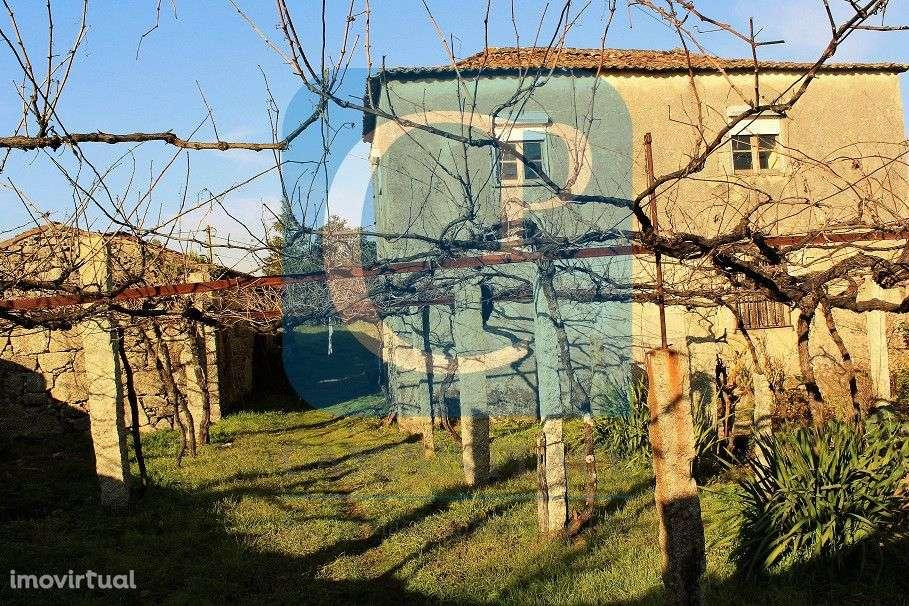 Quintas e herdades para comprar, Moreira, Viana do Castelo - Foto 3