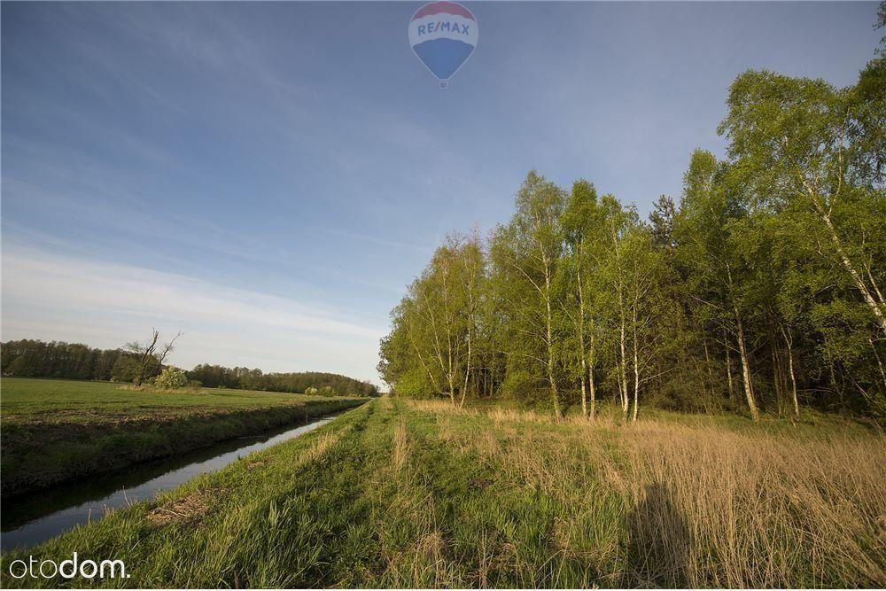 Działka rolno-leśna 2879 m²