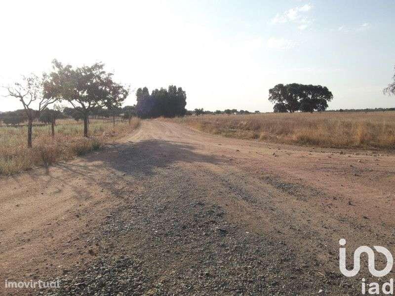 Terreno para comprar, Fronteira - Foto 16