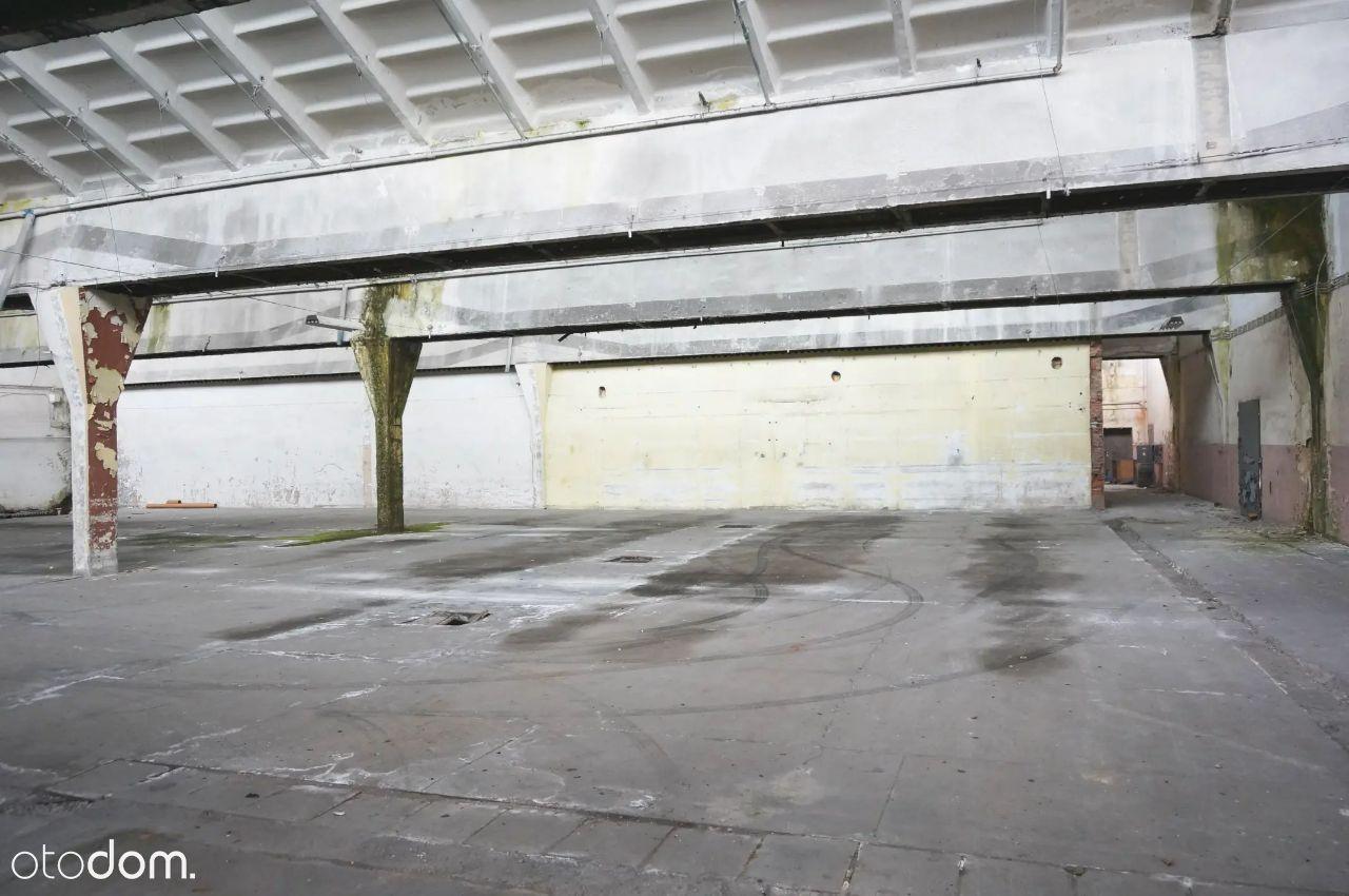 Hala produkcyjno - magazynowa 5.300 m2 - Ozorków