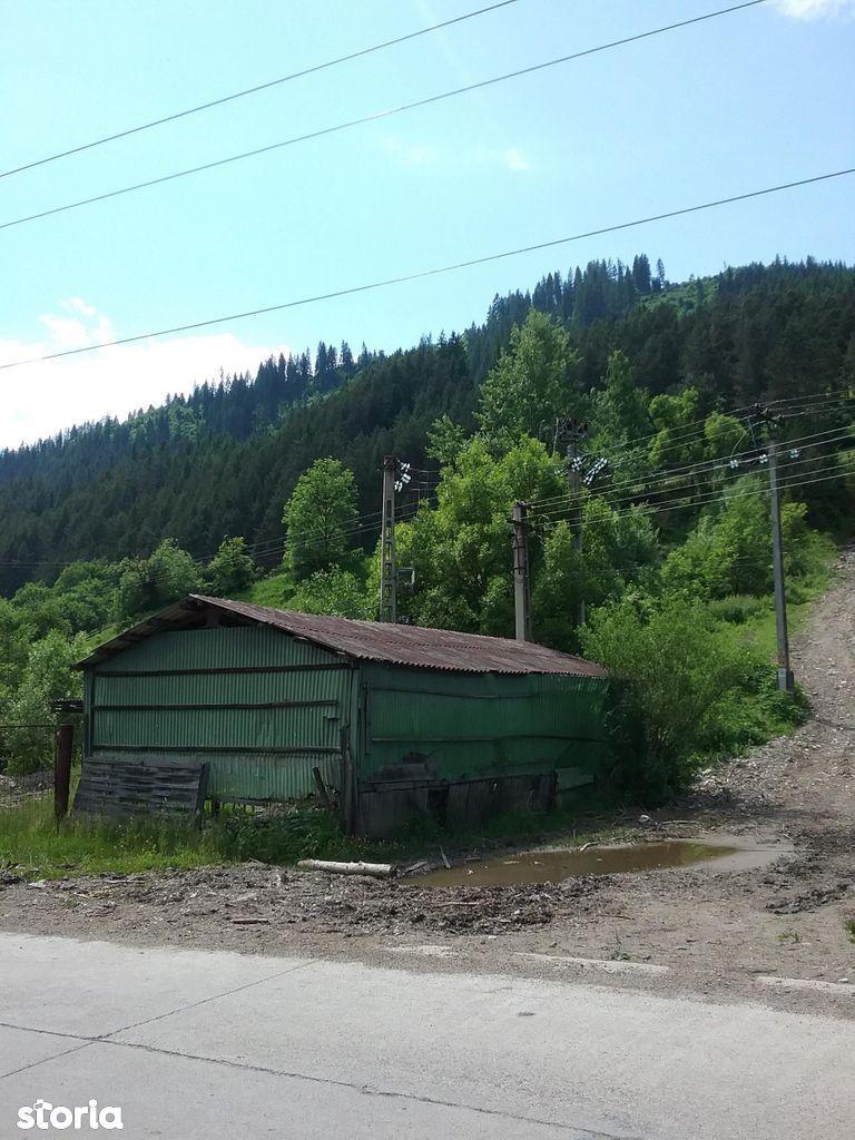 Hala Gater si teren, 348 mp, loc. Brosteni