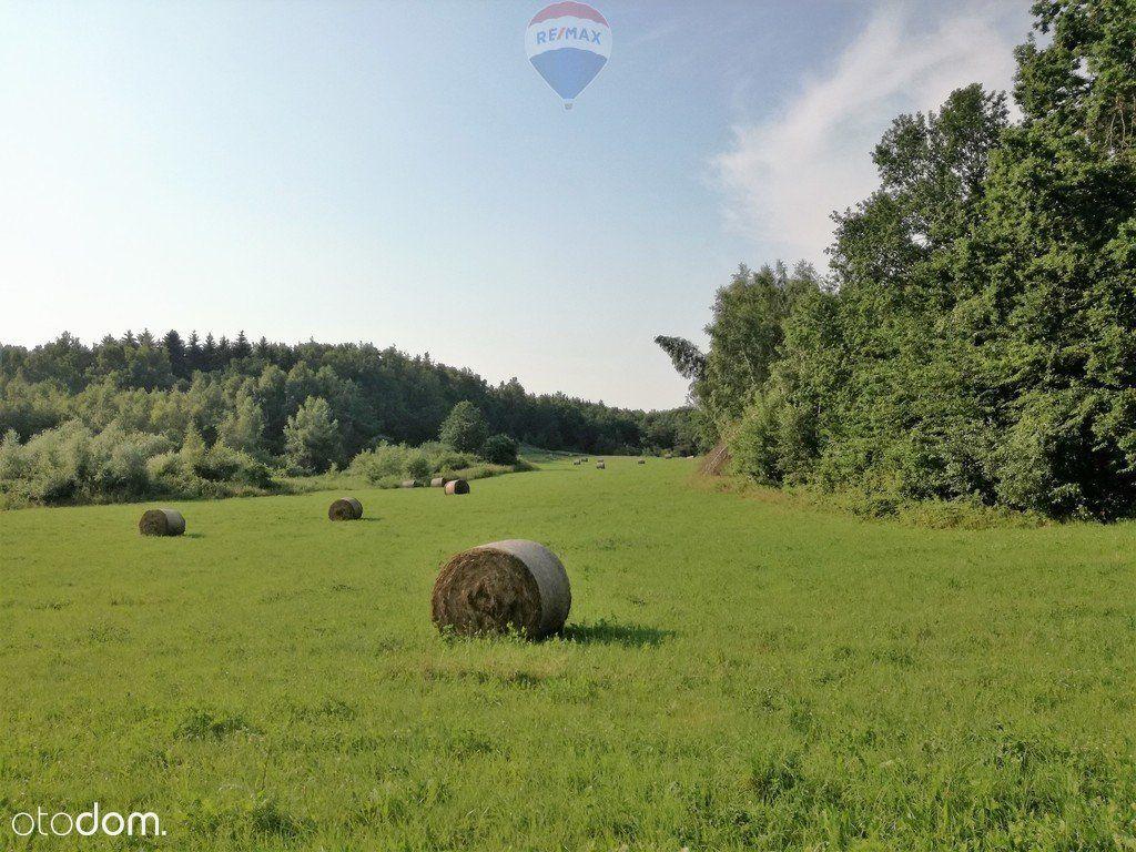 Ogrodniki k/Elbląga: działka rolna o pow.12,76ha