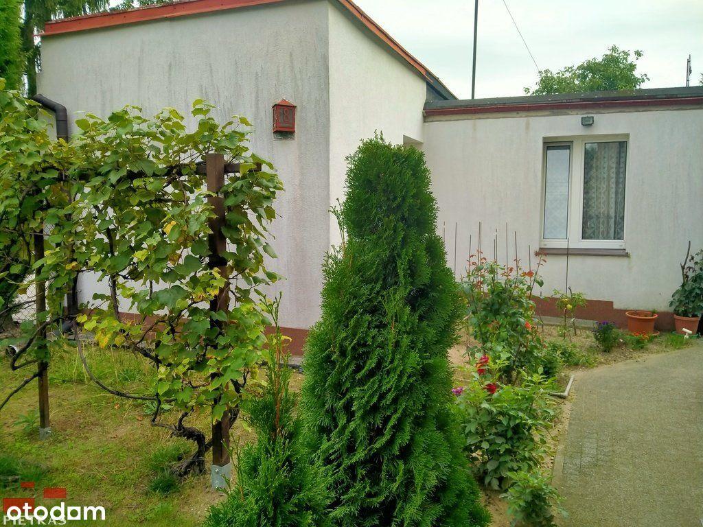 Mały domek w zieleni - 2 pok. 700 M campus Morasko