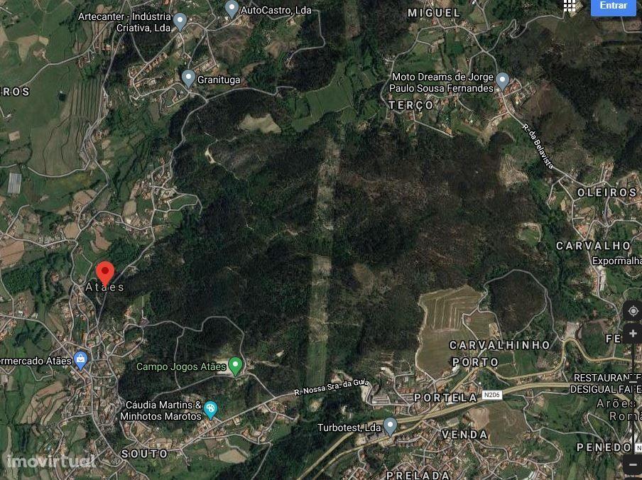 Terreno Rústico - Atães - Guimarães