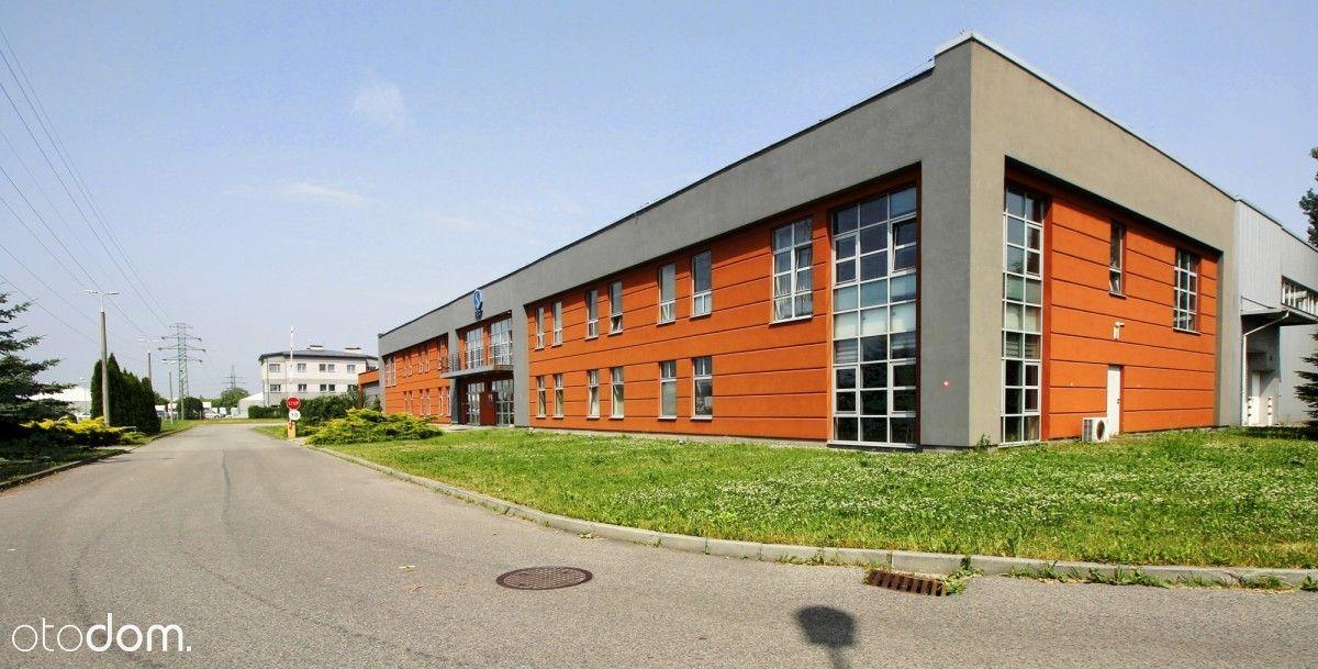 Przestronna powierzchnia biurowa na Rybitwach
