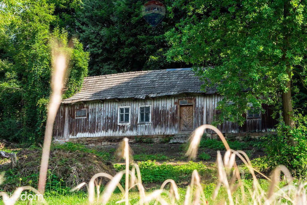 Siedlisko 62a z drewnianym domem z XX w