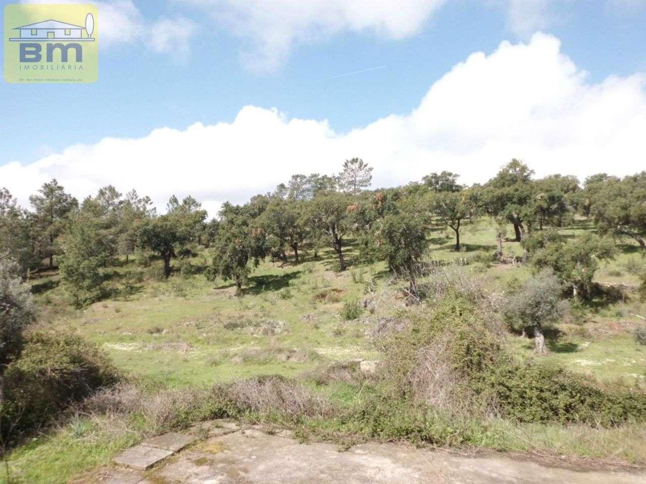 Quintas e herdades para comprar, Castelo Branco - Foto 1