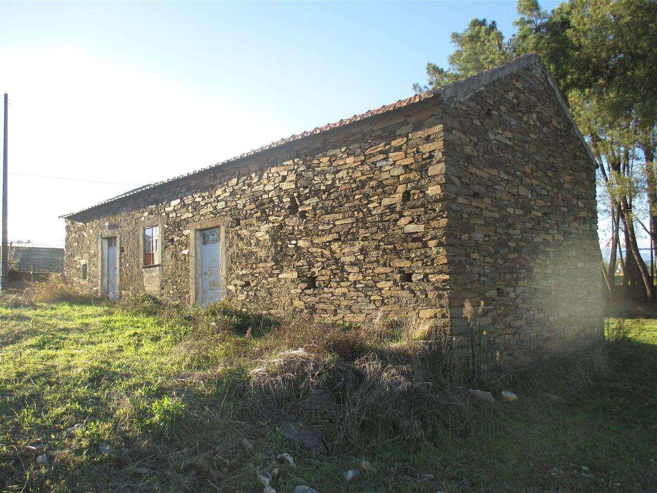 Quintas e herdades para comprar, Enxames, Castelo Branco - Foto 2