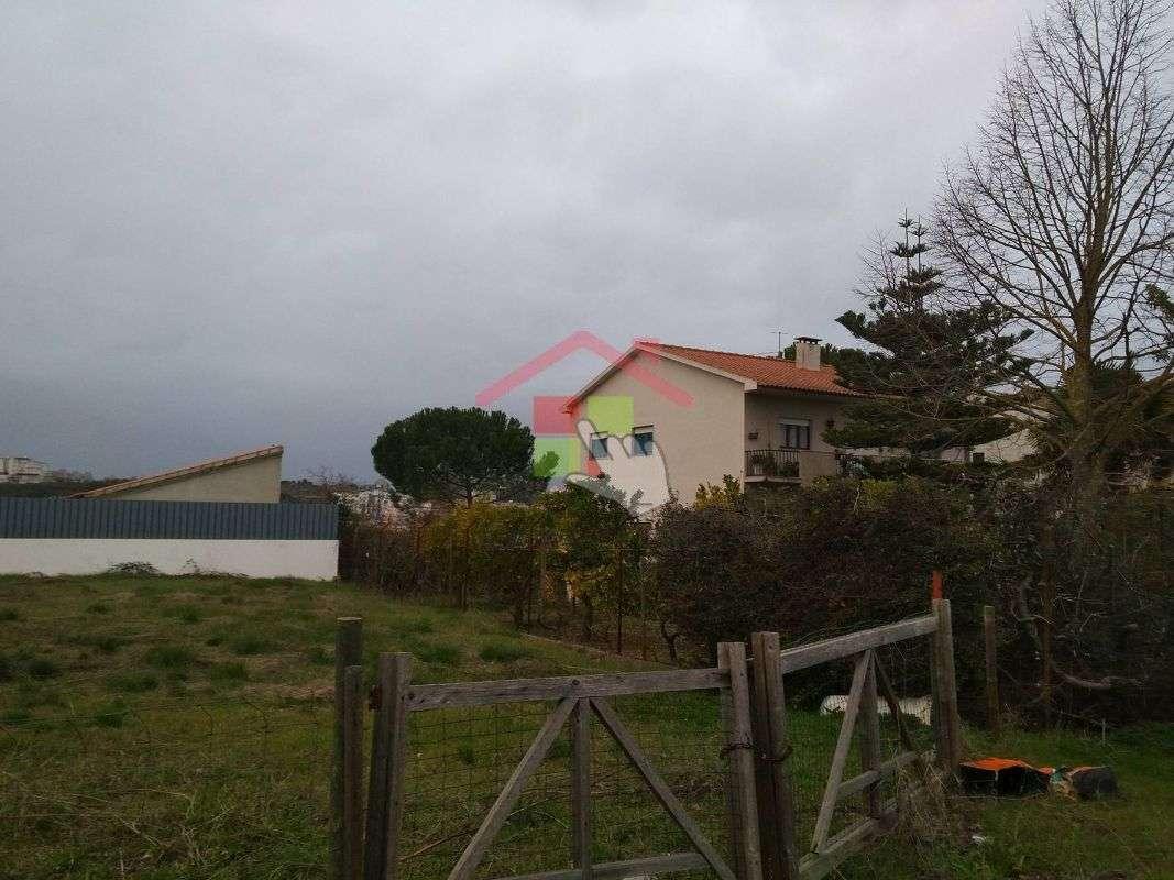 Terreno para comprar, Torres Novas (Santa Maria, Salvador e Santiago), Torres Novas, Santarém - Foto 3