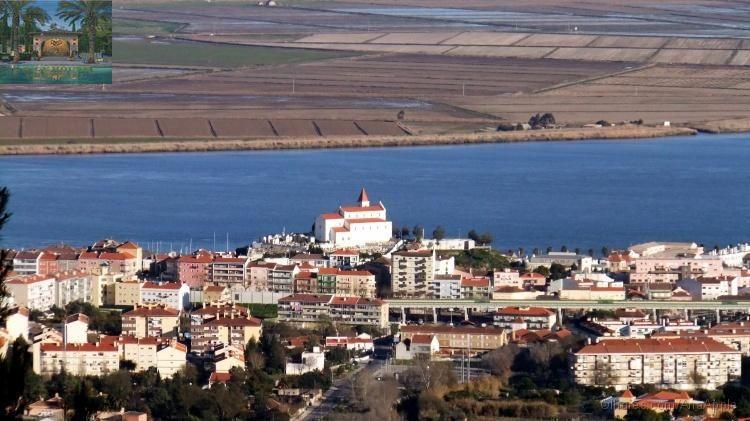 Alhandra -Herdade 300 Hectares de regadio , terra plana , terra limpa