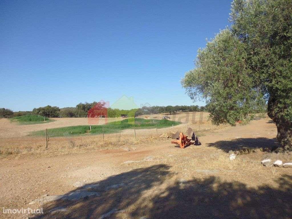 Quintas e herdades para comprar, Vila Verde de Ficalho, Beja - Foto 2