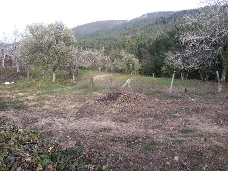 Quintas e herdades para comprar, Bornes de Aguiar, Vila Real - Foto 2