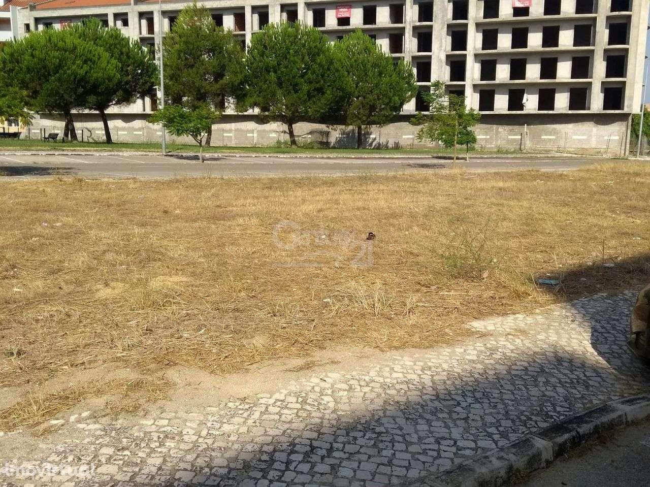 Terreno para comprar, Montijo e Afonsoeiro, Setúbal - Foto 3