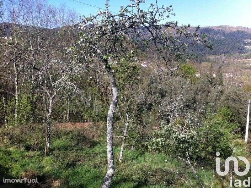 Moradia para comprar, Refojos de Basto, Outeiro e Painzela, Cabeceiras de Basto, Braga - Foto 6