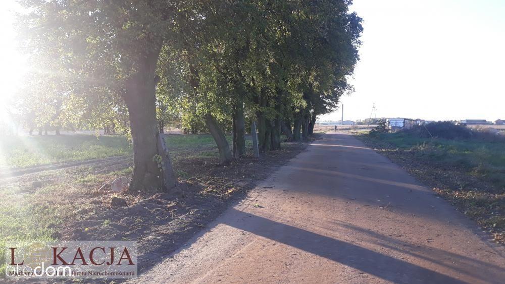 Działka, 764 m², Kalisz