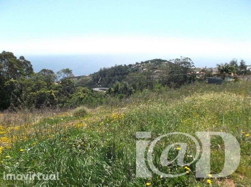 Terreno para comprar, Caniço, Santa Cruz, Ilha da Madeira - Foto 2