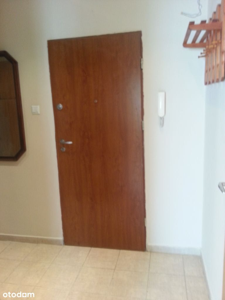 Wynajmę mieszkanie 2 pokoje 50 m 2 Sielec Centrum