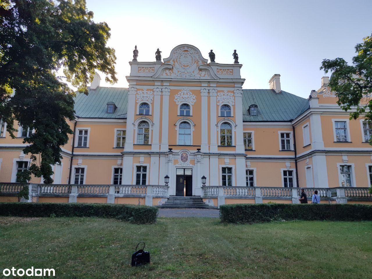 Pałac w cenie willi +park dworski 4,4 ha -Czempiń