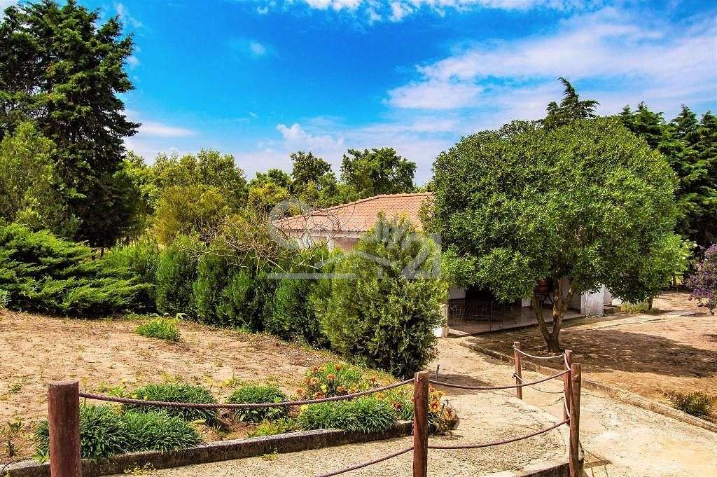 Quintas e herdades para comprar, Santiago do Cacém, Santa Cruz e São Bartolomeu da Serra, Setúbal - Foto 44