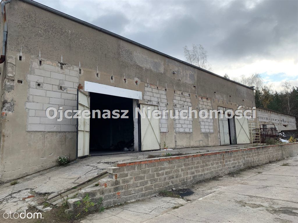 Hala/Magazyn, 550 m², Koronowo