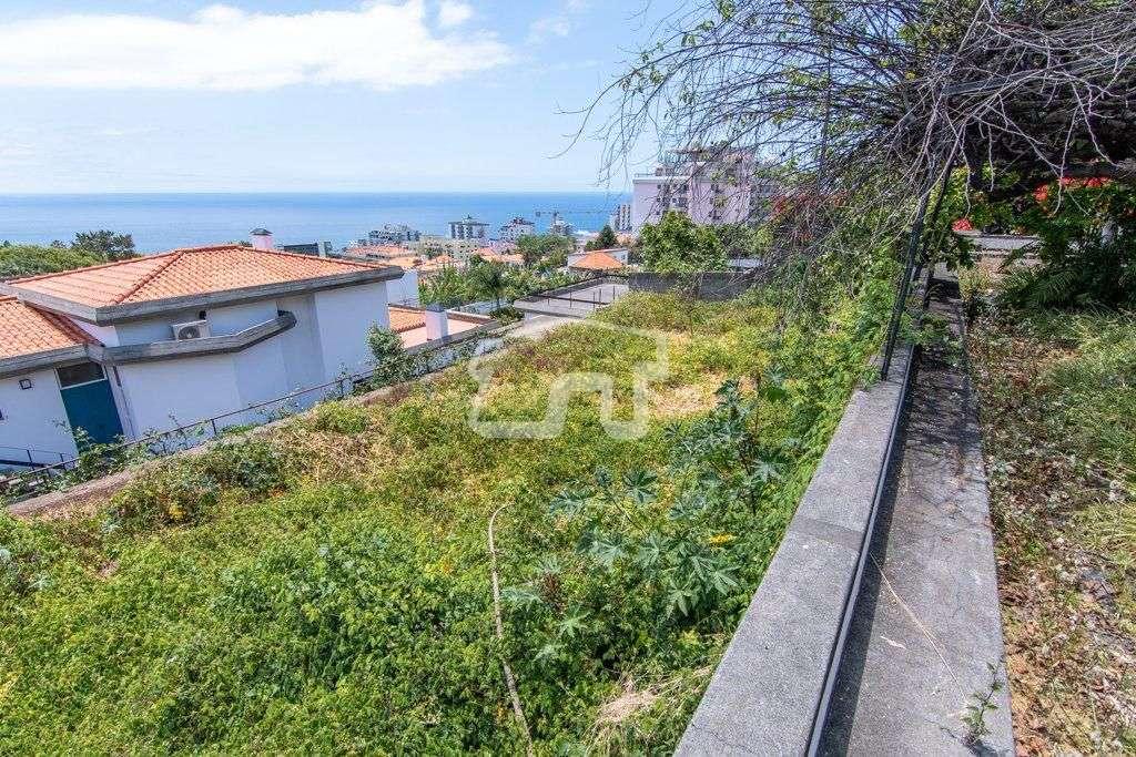 Quintas e herdades para comprar, São Martinho, Ilha da Madeira - Foto 11
