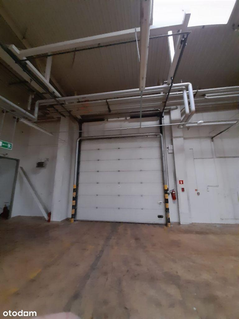 Magazyn 1500 m2 Uni Lubelskiej bezpośrednio