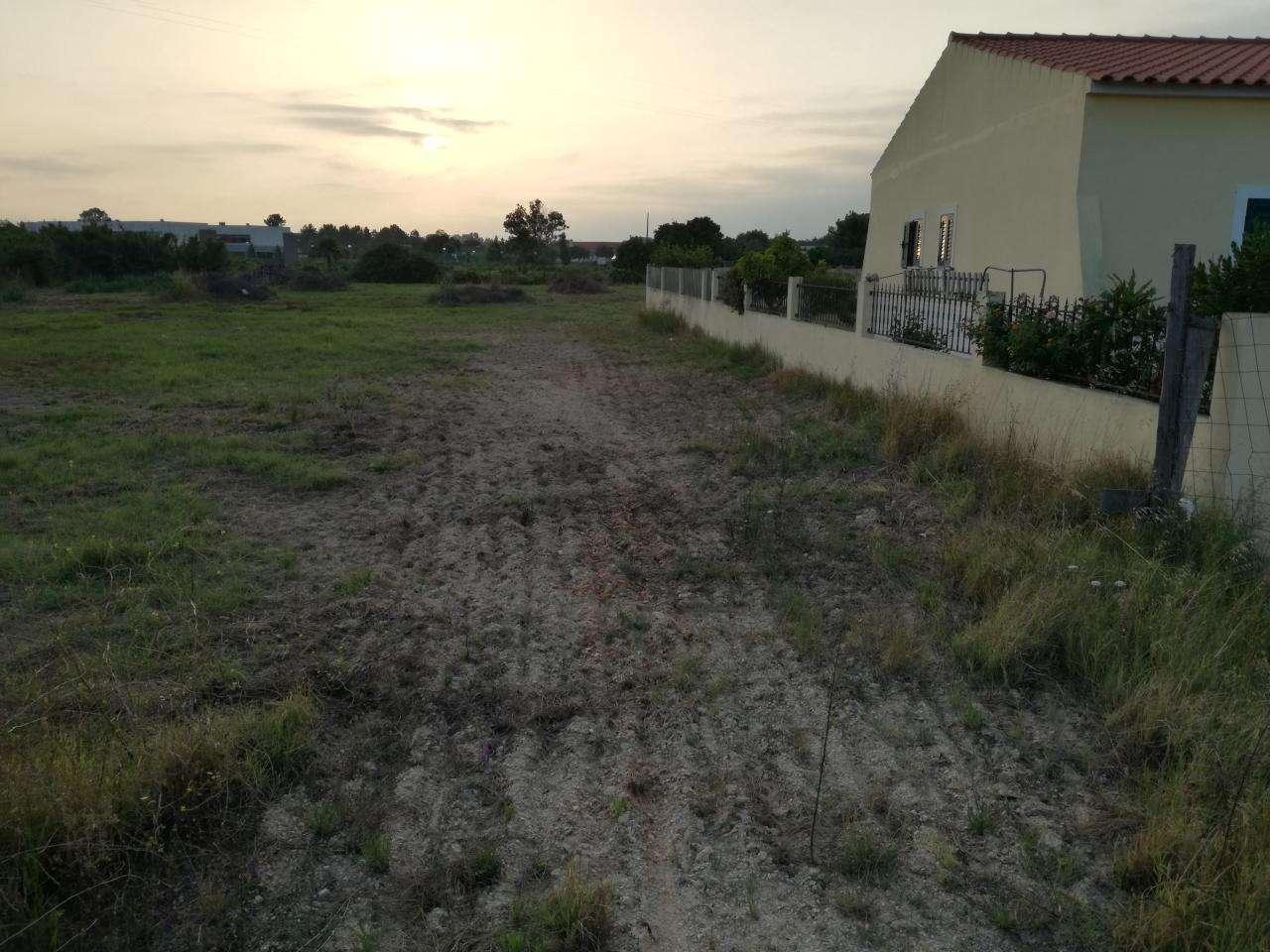 Terreno para comprar, Marinhais, Santarém - Foto 5