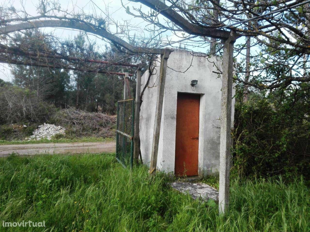 Quintas e herdades para comprar, Quinta do Anjo, Setúbal - Foto 15