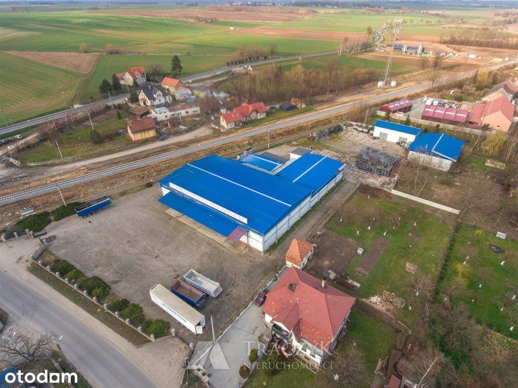 produkacja,przemysł,hala,przyDk35,15km odŚwidnica