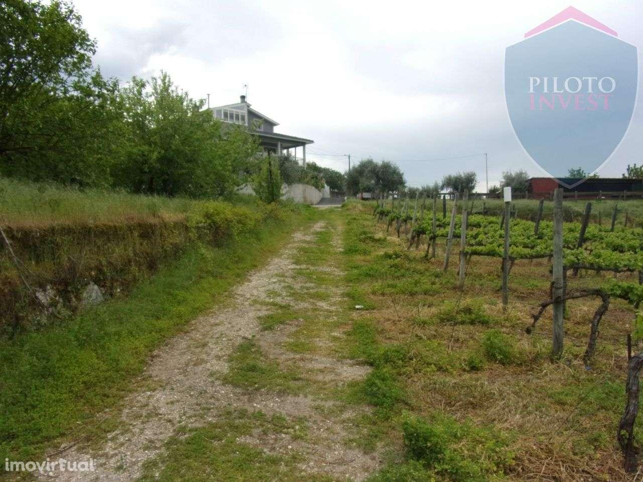 Quintas e herdades para comprar, São Miguel do Outeiro e Sabugosa, Viseu - Foto 5