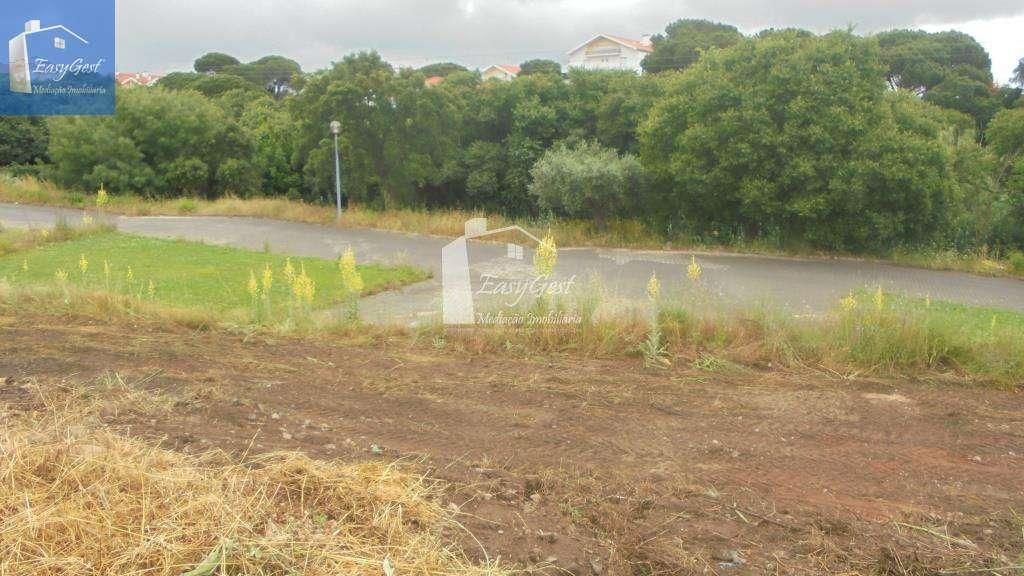 Terreno para comprar, Abrantes (São Vicente e São João) e Alferrarede, Santarém - Foto 4