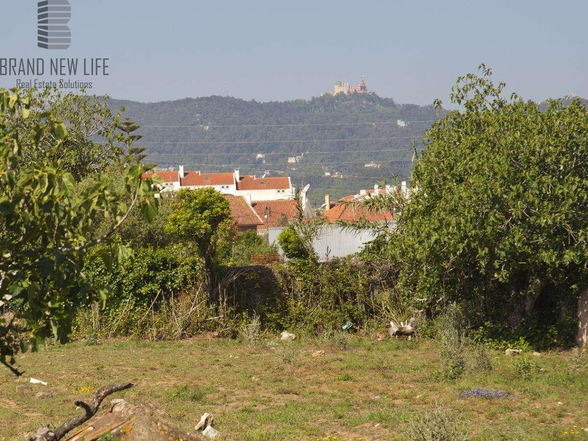 Quintas e herdades para comprar, Algueirão-Mem Martins, Lisboa - Foto 13