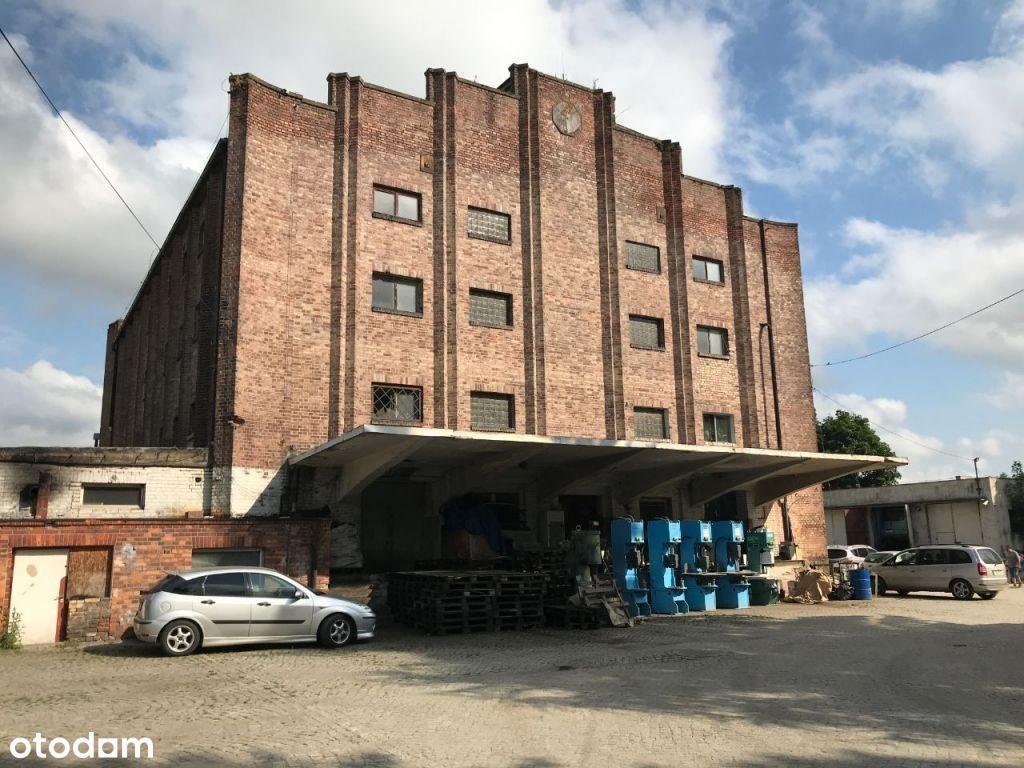 Budynek przemysłowo/magazynowy, teren