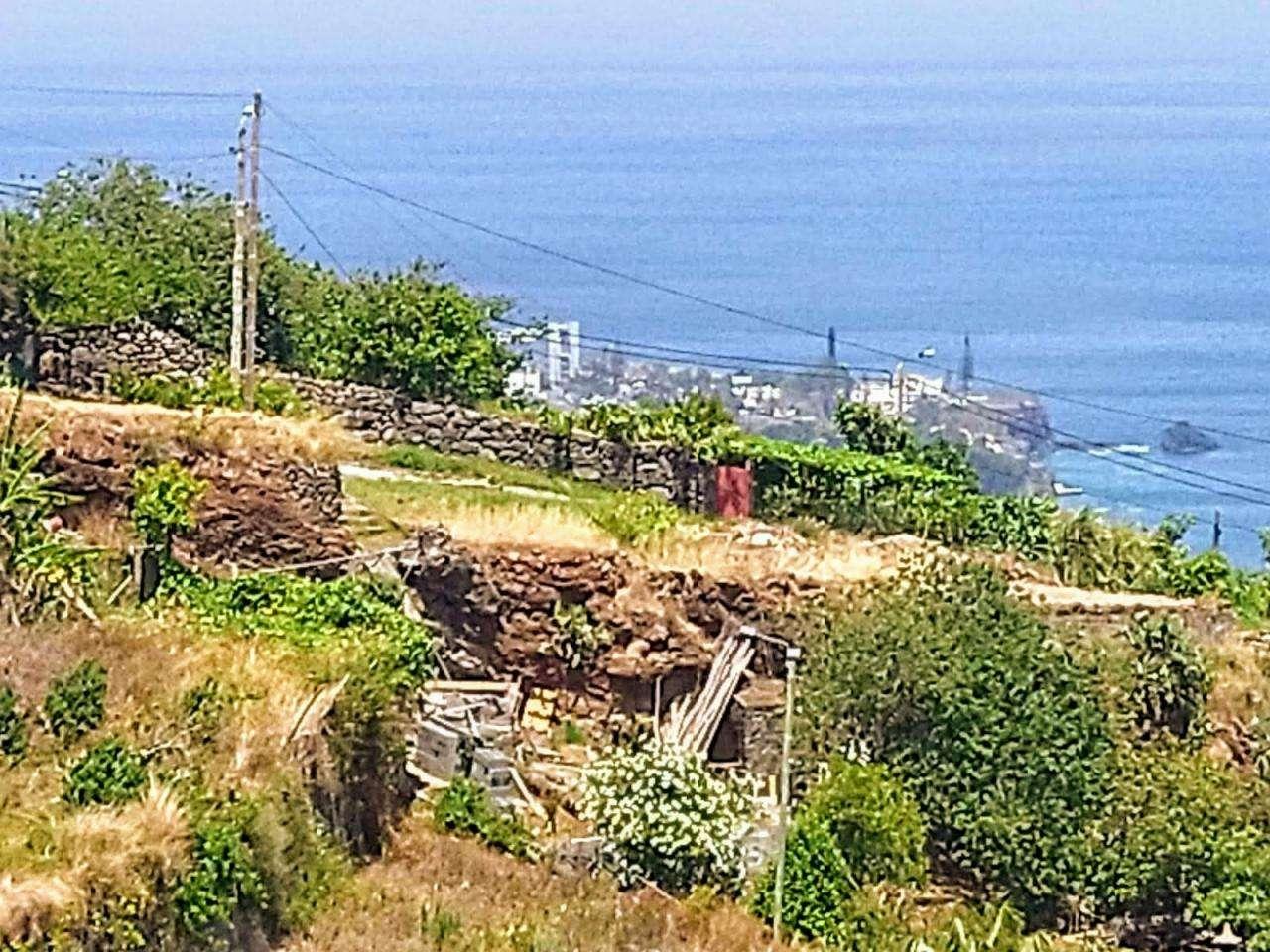 Moradia para comprar, Gaula, Ilha da Madeira - Foto 27